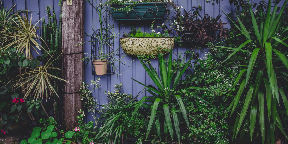 Ways to Keep Your Garden Healthy