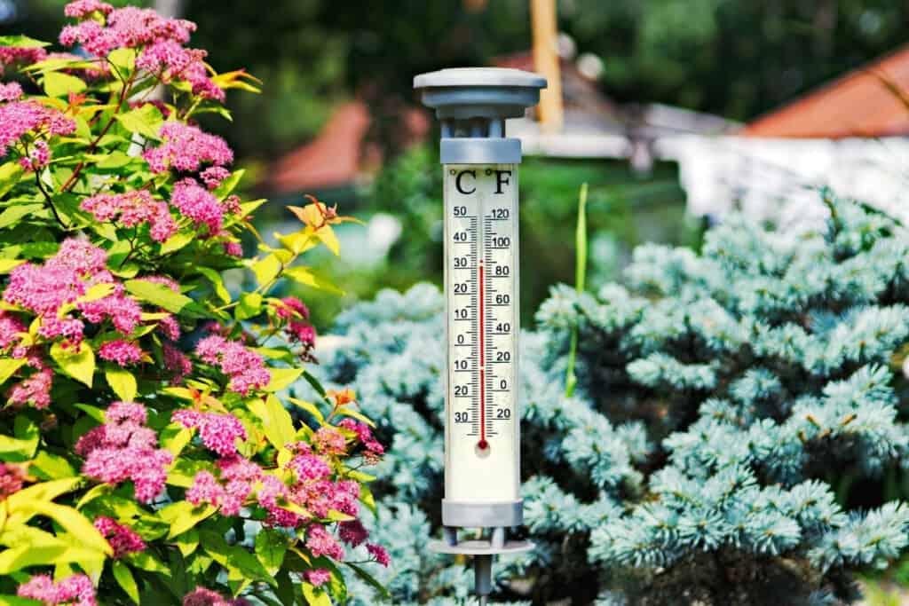 thermometer garden