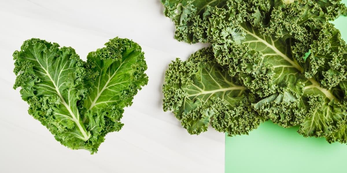 Kale Companion Plants (17)