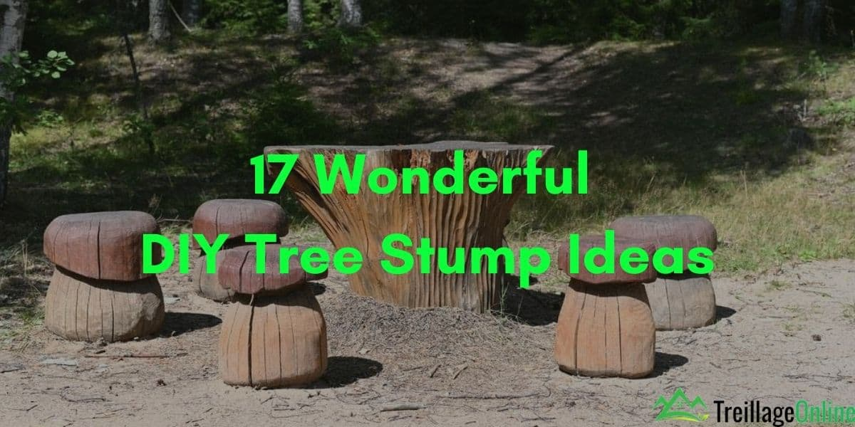 17 Wonderful DIY Tree Stump Ideas
