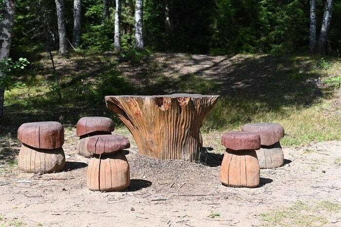 A Backyard Dining Table
