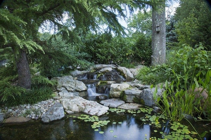 A Simple Pond & Stream Garden