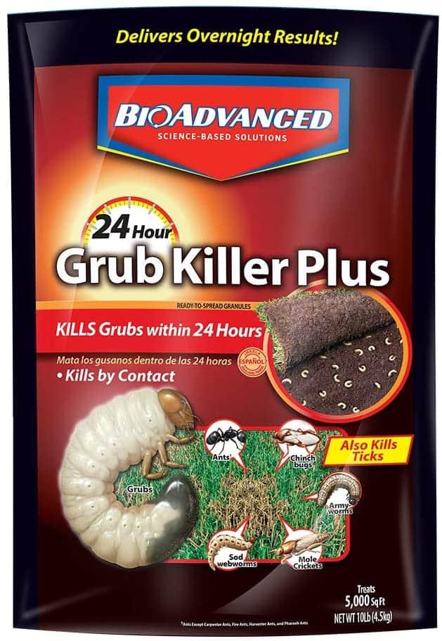 best grub killer