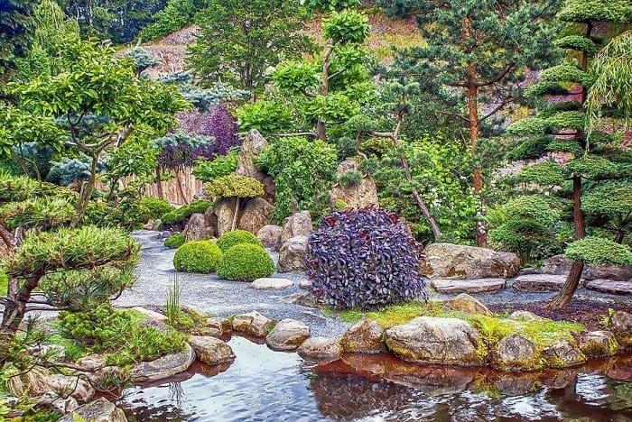 Garden Fantasy with Trees & Shrubs