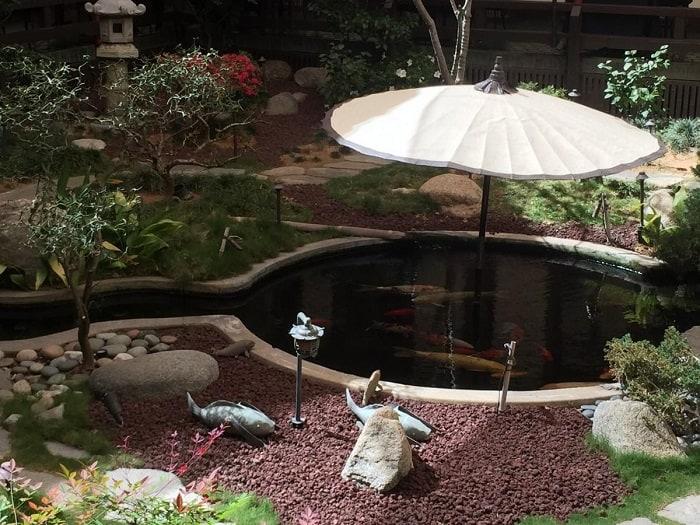 Mini Koi-Pond Style
