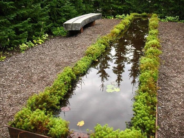 Moss & Pond Water Garden