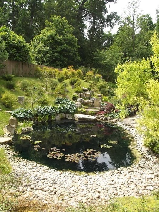 Pebbles & Pond Garden