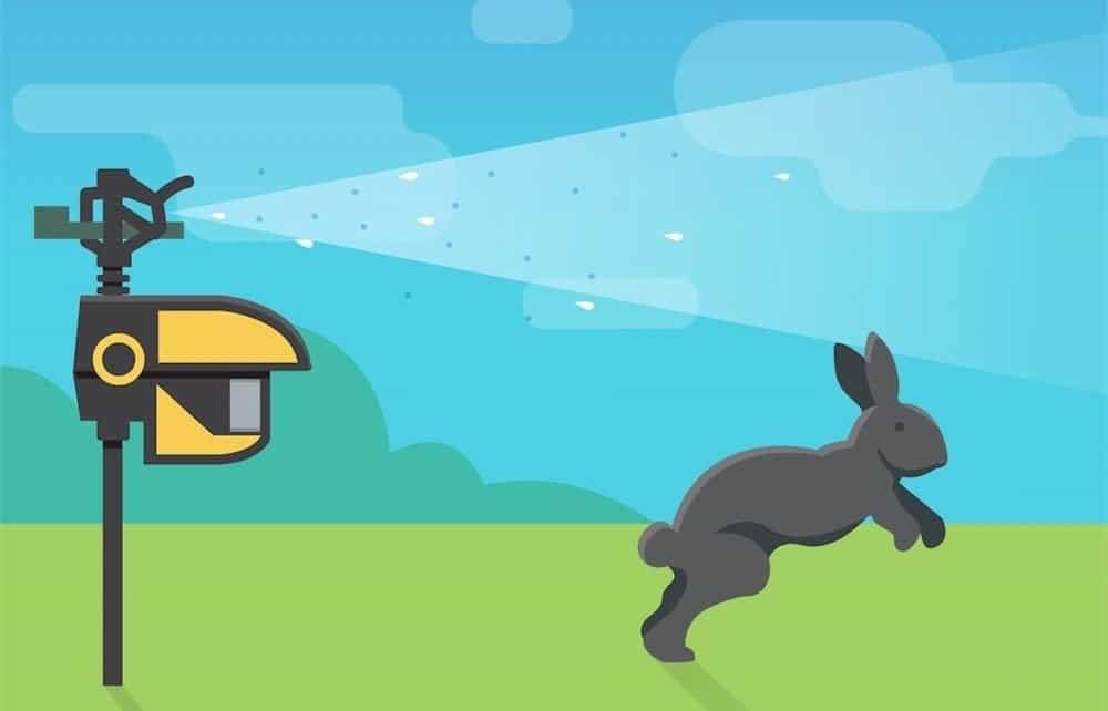 Rabbit Waterjet