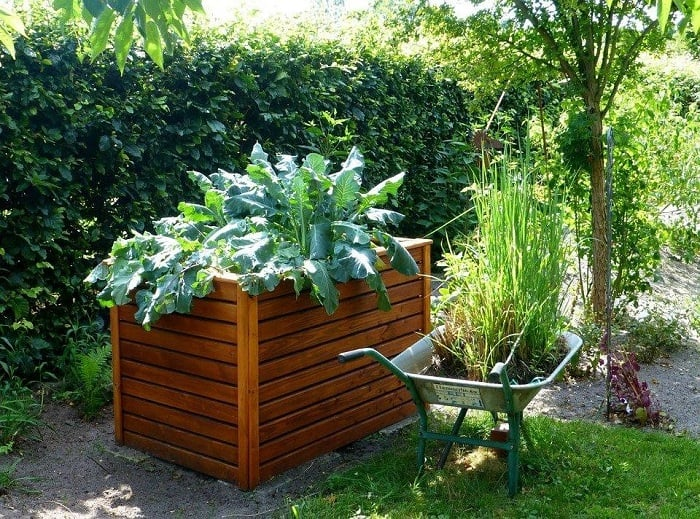 An Independent Wooden Raised Bed