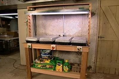 Indoor-Outdoor Planting Bench With Grow Light