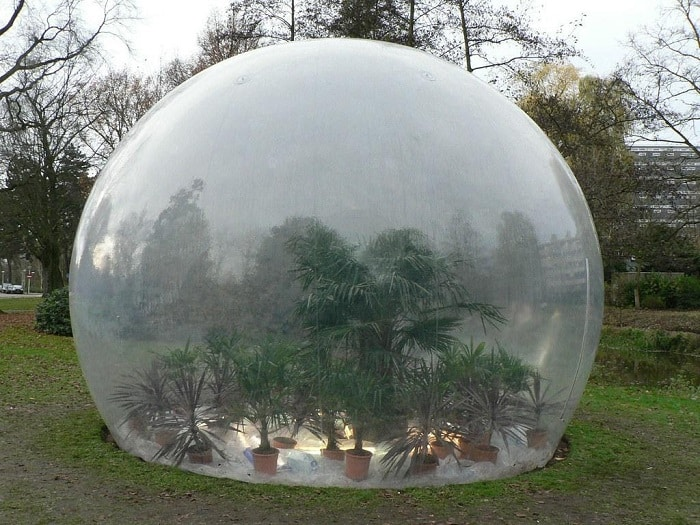 The Bubble Greenhouse