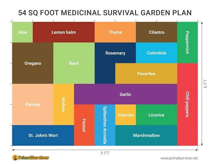 54 Square Foot Medicinal Survival Garden Plan