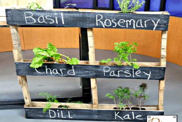 DIY Herb Pallet Garden