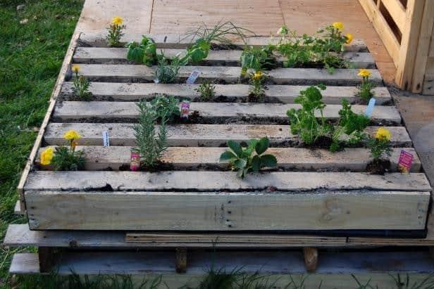 DIY Salvage Wood Pallet Garden