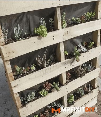 DIY Shelf-Style Vertical Pallet Garden