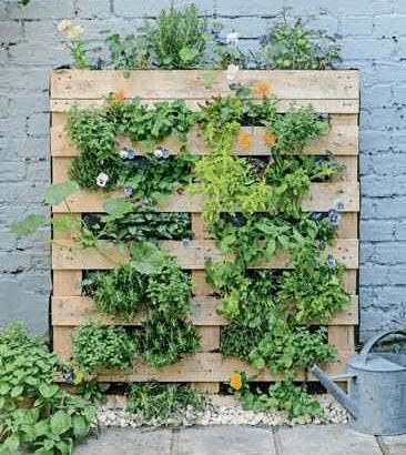 DIY Vertical Pallet Garden and Green Wall