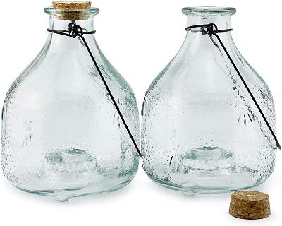 Darware Glass Wasp Catchers