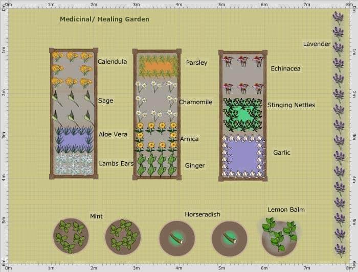 Medicinal/Survival/Healing Garden