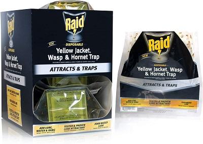 Raid Yellow Jacket and Wasp Trap