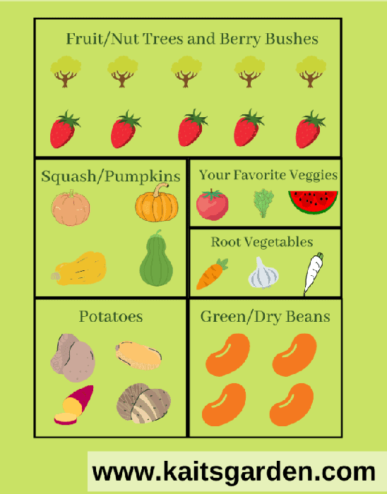 Victory Survival Garden Layout