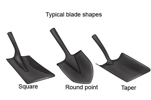 Blade Size, Shape, and Length