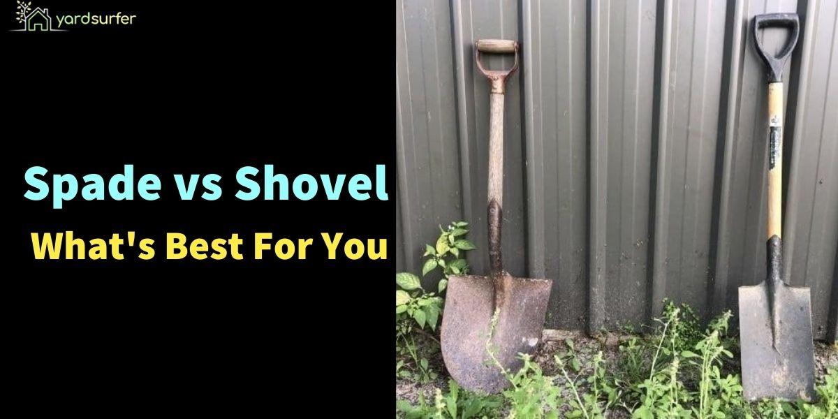 Spade vs Shovel What's Best For You